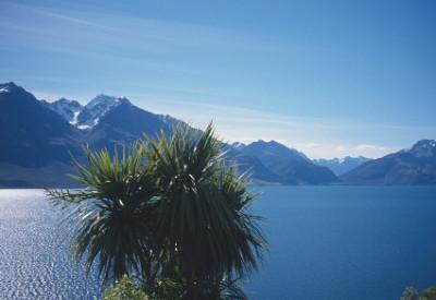Once a Land of Birds: Lake Wakatipu, South Island, New Zealand (© Magi Nams)