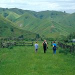 The Writing Life: Nature to Novel: Natural World as Fiction Backdrop: Hiking on North Island, New Zealand ( © Vilis Nams)