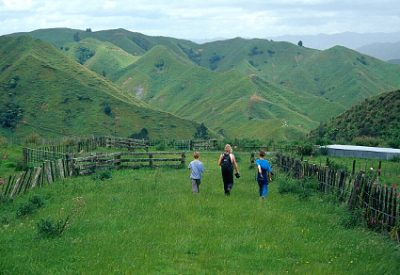 Nature to Novel: Natural World as Fiction Backdrop: Hiking on North Island, New Zealand ( © Vilis Nams)