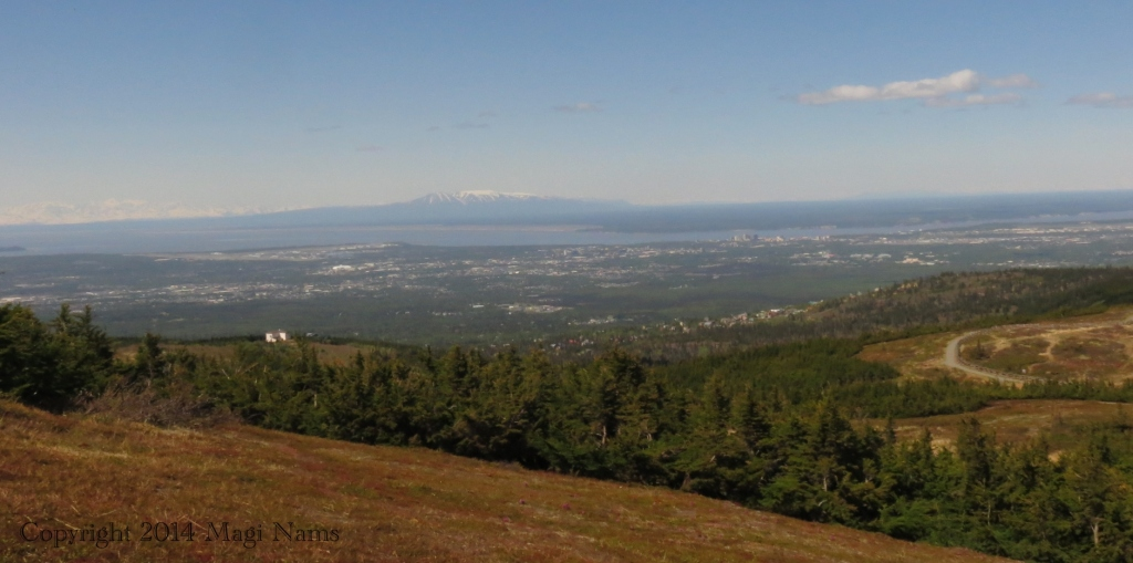 Viewe from Blueberry Hill, showing Anchorage, Cook Inlet, and 'The Sleeping Lady' in centre back