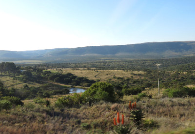 Six Months in South Africa: Destination: Grahamstown: African Landscape near Grahamstown (© Magi Nams)
