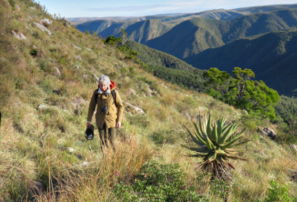 Six Months in South Africa: Doringkloof Walk, Addo Elephant National Park: Hiking through Fynbos (© Vilis Nams)