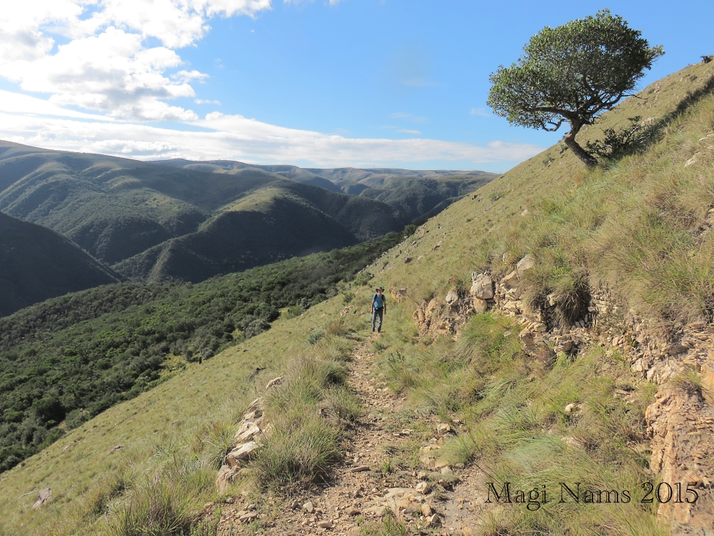 Six Months in South Africa: Doringkloof Walk, Addo Elephant National Park: Doringkloof Walk (© (Magi Nams)
