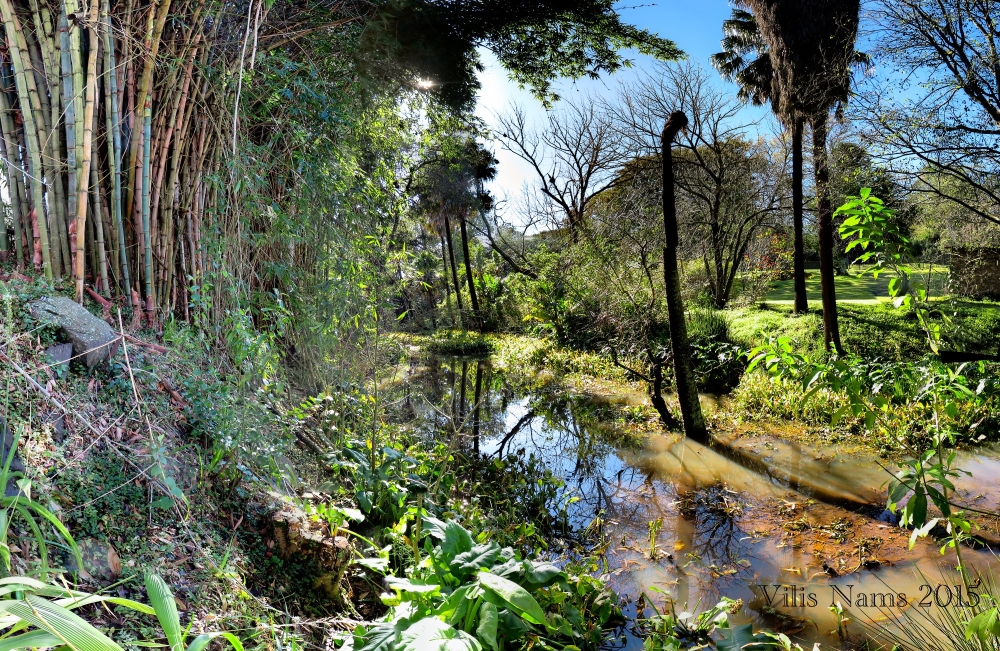 Six Months in South Africa: Makana Botanical Gardens, Grahamstown: Makana Botanical Gardens (© Vilis Nams)