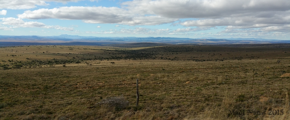 Six Months in South Africa: Great Cell Phone Images of Eastern Cape: Grassveld North of Grahamstown (© Magi Nams)