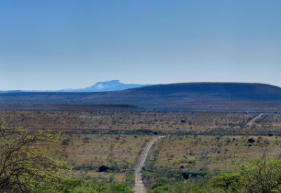 Six Months in South Africa: Coordinated Avifaunal Roadcount: Eastern Cape Veld, Smaldeel Conservancy (© Vilis Nams)