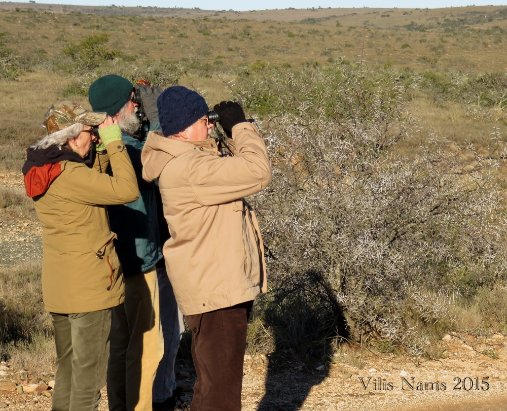 7 Ways to Enrich Your LIfe Through Birding: Checking out a bird sighting on a Coordinatied Avifaunal Roadcount, Eastern Cape, South Africa. (© Vilis Nams)