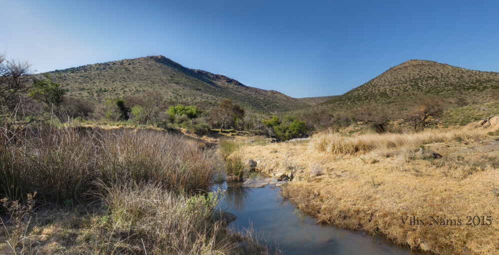 Six Months in South Africa: Birding in Baviaans River Valley: Drainage Line and Grassveld, Baviaans River Conservancy (© Vilis Nams)