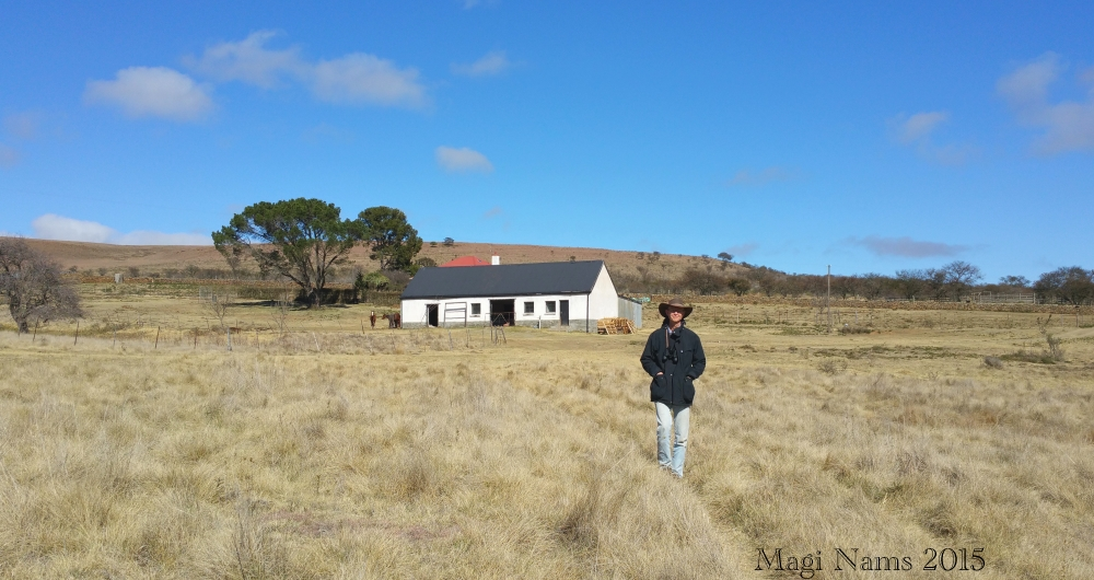 Six Months in South Africa: Birding in Baviaans River Valley: On an Eastern Cape High Country Farm (© Magi Nams)