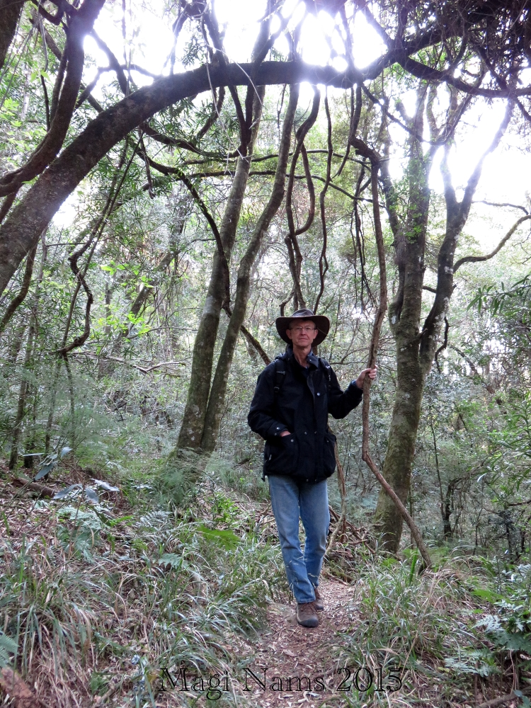 Six Months in South Africa: Hiking at Hogsback: On Tor Doone Trail (© Magi Nams)