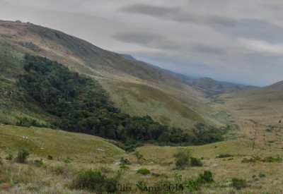 Six Months in South Africa: Hiking Featherstone Kloof: Featherstone Kloof (© Vilis Nams)