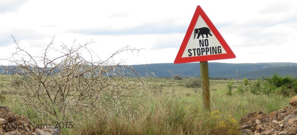 Six Months in South Africa: Poor Man's Game Drive: Wildlife Warning in Shamwari Game Reserve (© Magi Nams)