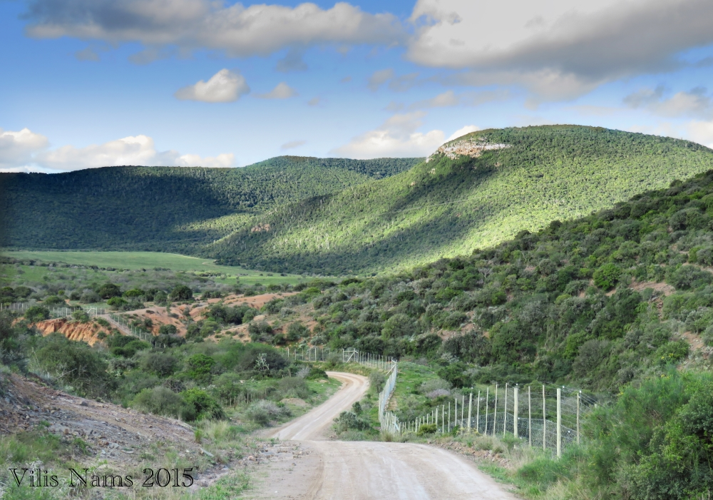 Six Months in South Africa: Poor Man's Game Drive: Public Road and Shamwari Game Reserve (© Vilis Nams)