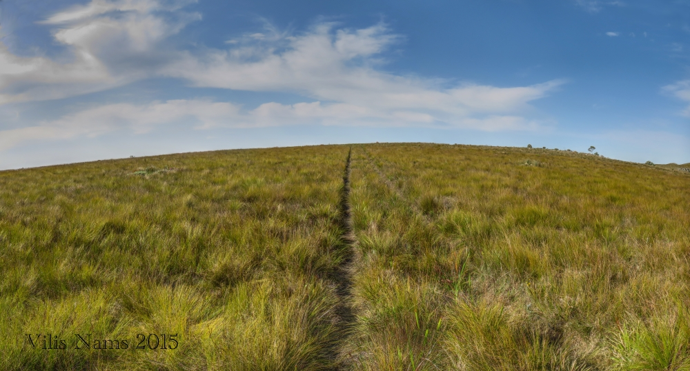 The Writing Life: Beginning Rock and Thorn: Six Months in South Africa: Oldenburgia Trail, Eastern Cape, South Africa (© Vilis Nams)