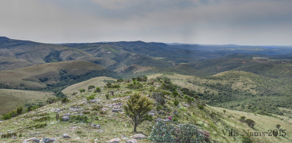 Six Months in South Africa: Hiking Oldenburgia Trail: Rocky Spur on Oldenburgia Trail (© Vilis Nams)