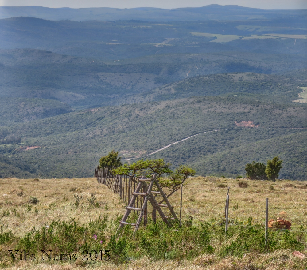 Six Months in South Africa: Hiking Oldenburgia Trail: Stile on Oldenburgia Trail (© Vilis Nams)