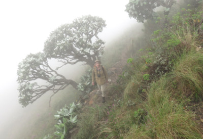 Six Months in South Africa: Dassie Krans in the Mist: On Dassie Krans Trail near Grahamstown (© Vilis Nams)