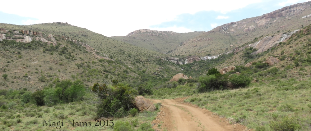 Six Months in South Africa: Mountain Zebra National Park: Mountain Cottage Access Road (© Magi Nams)