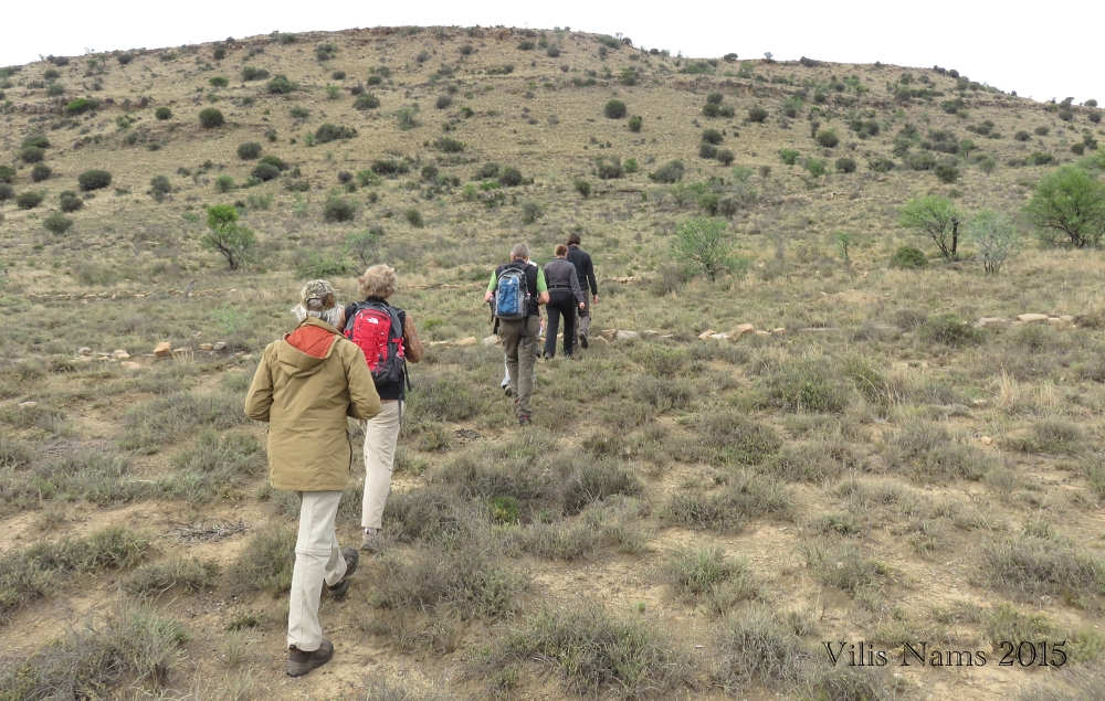 Six Months in South Africa: Mountain Zebra National Park: Tracking a GPS-collared Cheetah (© Vilis Nams)