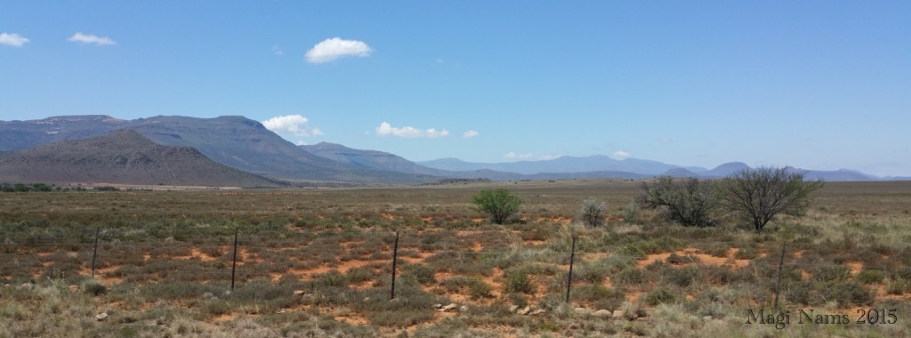 Dry Rangeland en route to Camdeboo National Park (© Magi Nams)