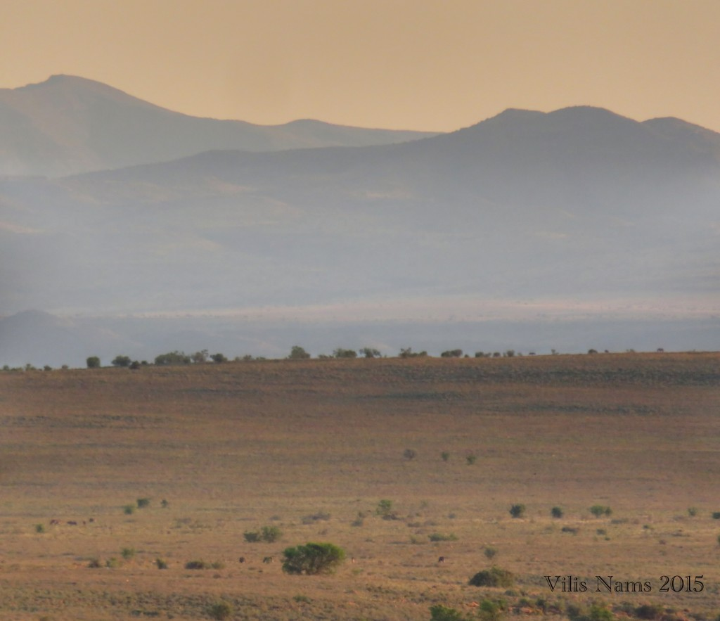 Six Months in South Africa: Mountain Zebra National Park: Sunrise in Mountain Zebra National Park (© Vilis Nams)