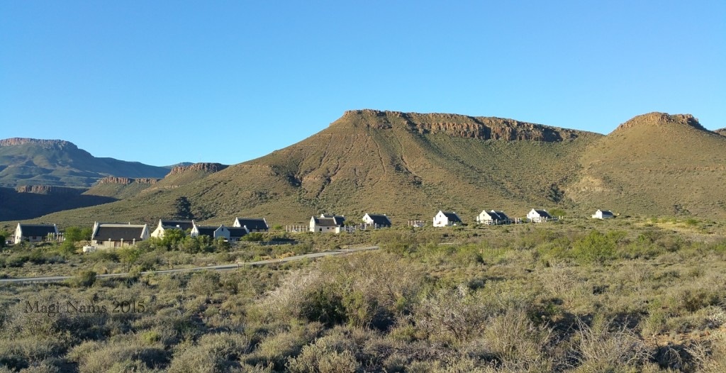 Six Months in South Africa: Karoo National Park: Main Rest Camp in Karoo National Park (© Magi Nams)