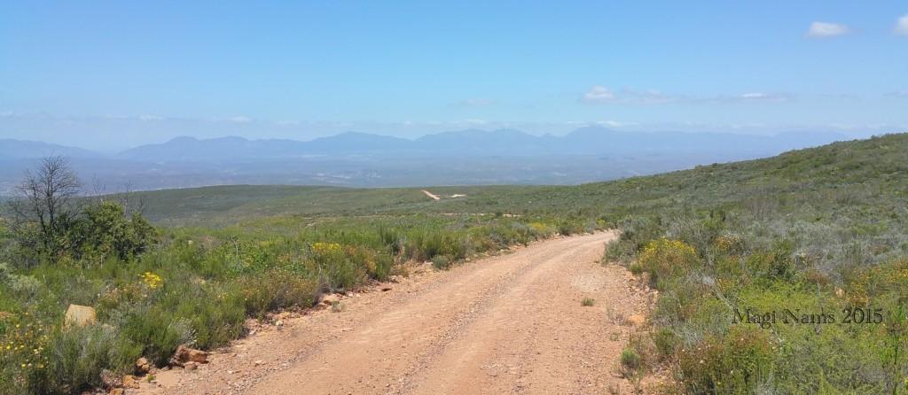 Six Months in South Africa: Klein Karoo: Rooiberg Pass (© Magi Nams)