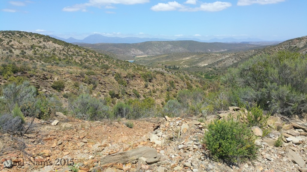 Six Months in South Africa: Klein Karoo: Rugged Rooiberg Hills (© Magi Nams)
