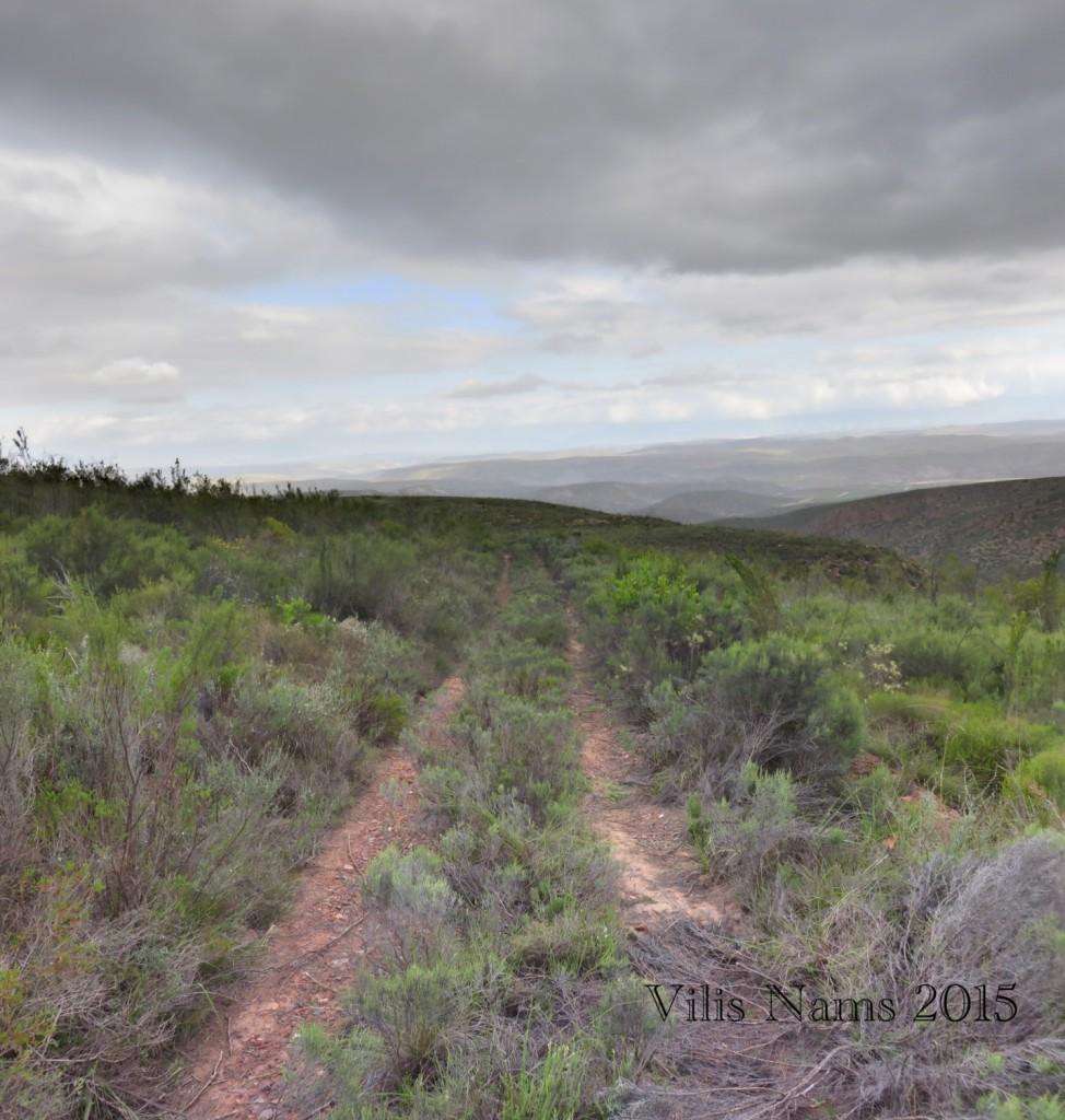 Six Months in South Africa: Klein Karoo: Rooiberg Hills, (© Vilis Nams)
