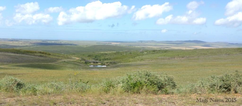 Six Months in South Africa: Cloetes Pass: Western Cape Coastal Plain southeast of Cloetes Pass and Du Plessis Pass (© Magi Nams)