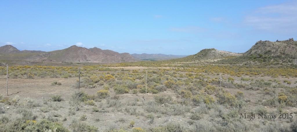 Six Months in South Africa: Cloetes Pass: Arid Klein Karoo Landscape near Van Wyksdorp, north of Cloetes Pass (© Magi Nams)