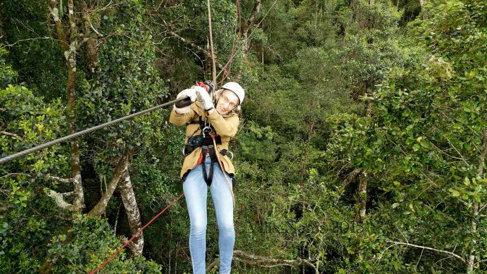 Six Months in South Africa: Tsitsikamma Forest Canopy Tour: Enjoyiing the Tsiitsikamma Forest Canopy Tour. (© Vilis Nams)