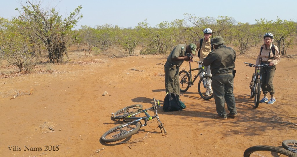 Six Months in South Africa: Kruger National Park: Tire repairs under the hot African sun (© Vilis Nams)
