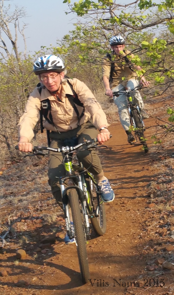 Six Months in South Africa: Kruger National Park: Mountain biking in Kruger National Park (© Vilis Nams)
