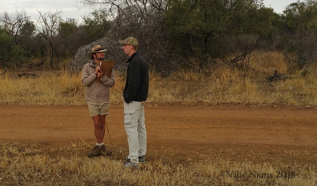 Reading African Animal Tracks and Sign: Jānis Reporting to Tiz (© Magi Nams)
