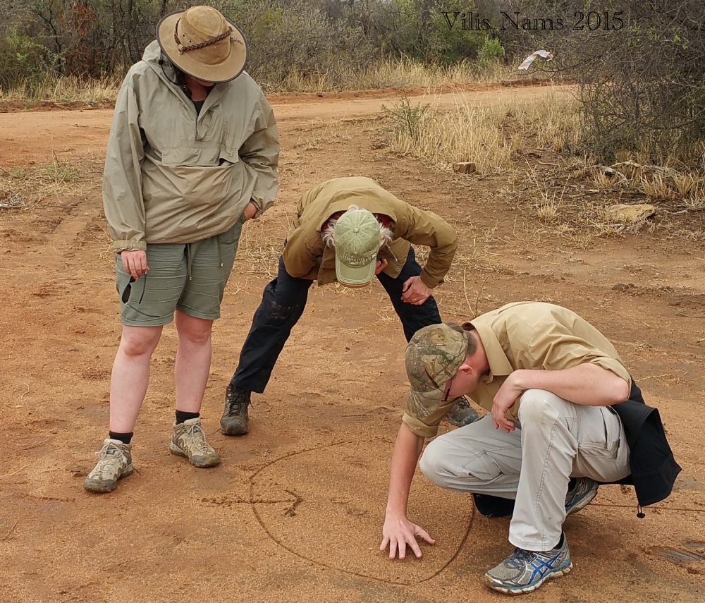 "Six Months in South Africa: Tracking Wildlife in Limpopo: In the ""classroom,"" studying tracks. That's me in the centre and Jānis on the right. (© Vilis Nams)"