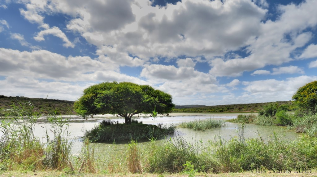 Six Months in South Africa: Great Fish River Reserve: View from Kentucky Hide (© Vilis Nams)