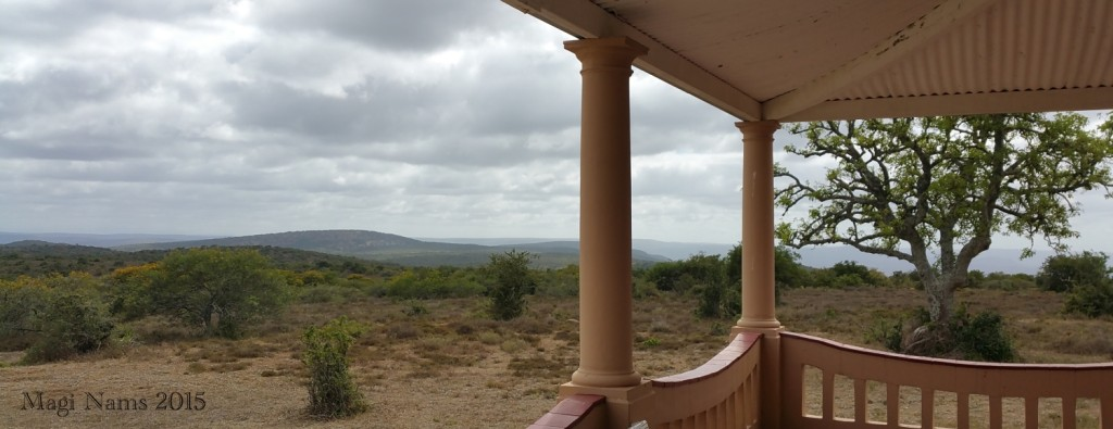 Six Months in South Africa: Great Fish River Reserve: Great Fish River Reserve, viewed from lodge (© Magi Nams)