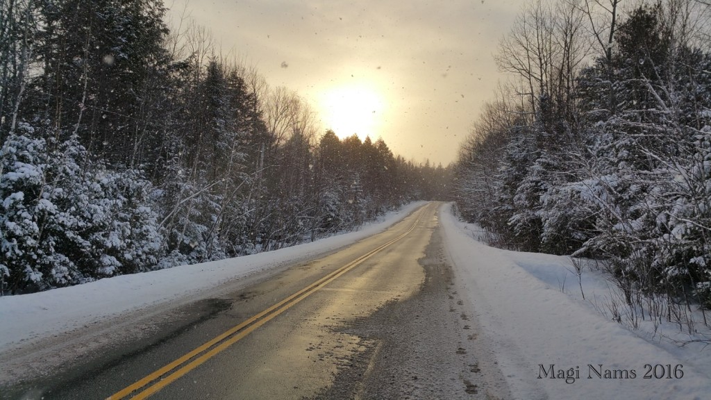 South African Summer to Canadian Winter – Big Change!: My Footprints on a snowy Canadian Road (© Magi Nams)