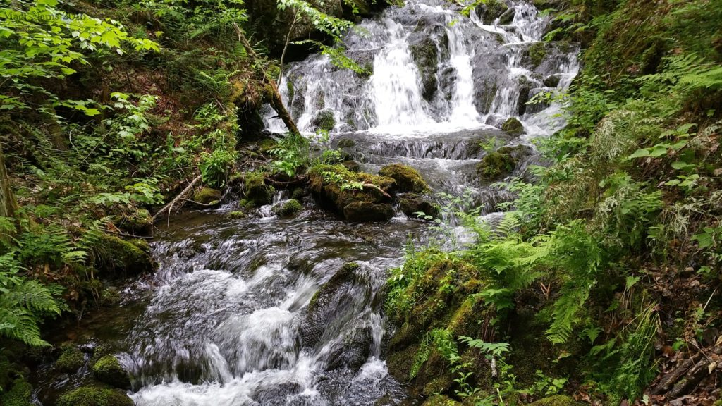 Hiking in Canada: Gully Lake Wilderness Area, Nova Scotia: Donald's Falls (© Magi Nams)