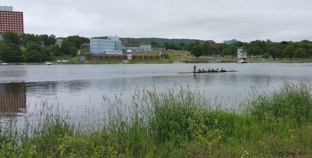 Exploring Canada: St. John's, Newfoundland and Labrador – City on the Eastern Tip of North America: Rowers on Quidi Vidi Lake (©Magi Nams)