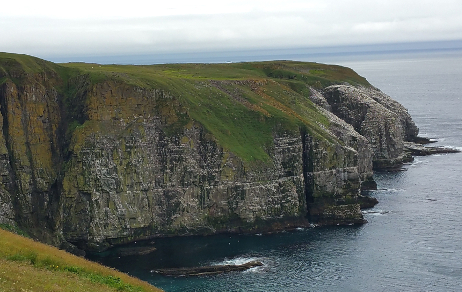 Cape St. Mary's Ecological Reserve: Cape St. Mary's, Newfoundland and Labrador