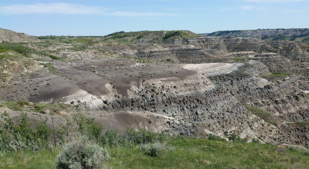Hiking in Canada: Dry Island Buffalo Jump Provincial Park, Alberta: Badlands in Dry Island Buffalo Jump Provincial Park (©Magi Nams) Note the Dry Island mesa in centre back.