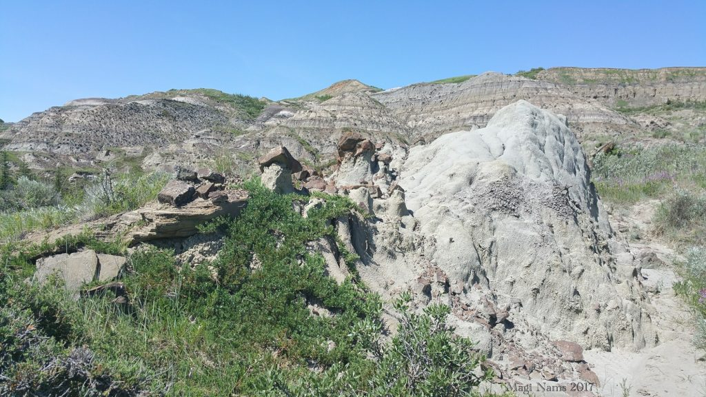 Hiking in Canada: Dry Island Buffalo Jump Provincial Park, Alberta: Erosion features in Dry Island Buffalo Jump Provincial Park (©Magi Nams) Note the small hoodoos at centre left and the rills on the steep hillsides in the background.