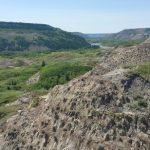 Hiking in Canada: Dry Island Buffalo Jump Provincial Park, Alberta: Red Deer River badlands at Dry Island Buffalo Jump Provincial Park (© Magi Nams)