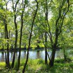 Hiking in Canada: Hammond River Park, New Brunswick (© Magi Nams)