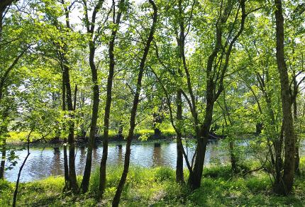 Hammond River Park, New Brunswick