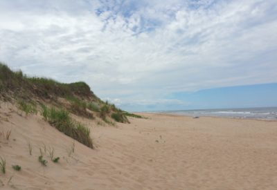 Exploring Canada: Images from Prince Edward Island: Dunes and Beach in Greenwich Section, Prince Edward Island National Park (©Magi Nams)