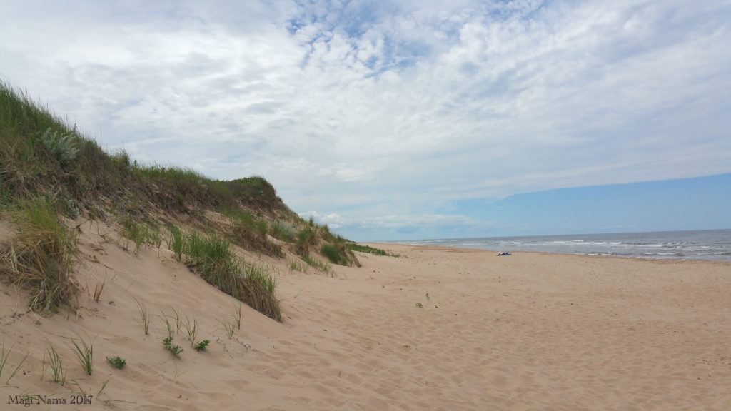 Images of Prince Edward Island: Sand Dunes, Greenwich Section, Prince Edward Island National Park (©Magi Nams)