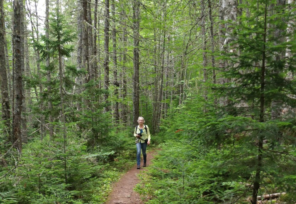 Hiking in Canada: Gairloch Road Trail, Prince Edward Island: Hiking Gairloch Road Trail, Prince Edward Island, Canada (© Vilis Nams)